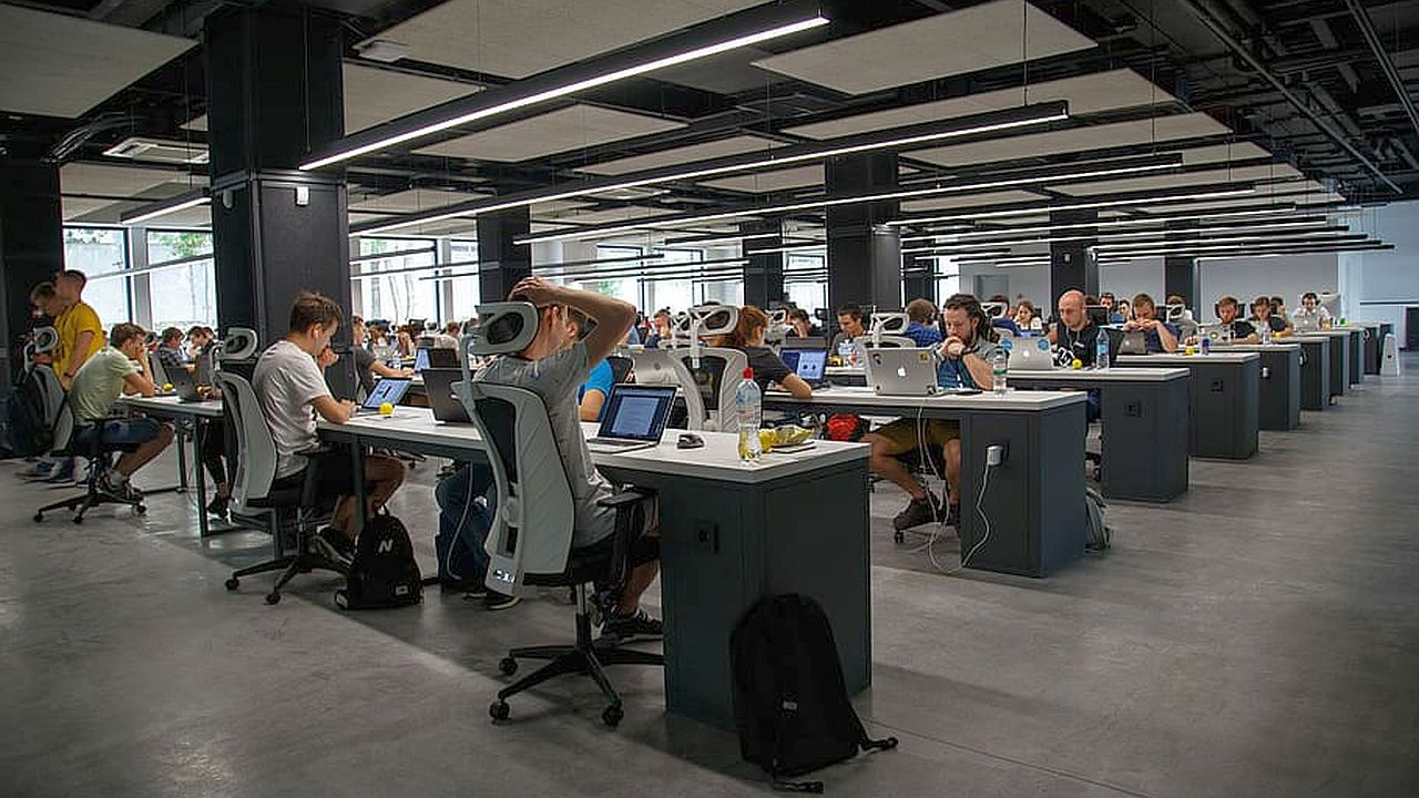 programiści w pracy