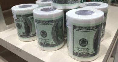 papier toaletowy z nadrukowanymi pieniędzmi