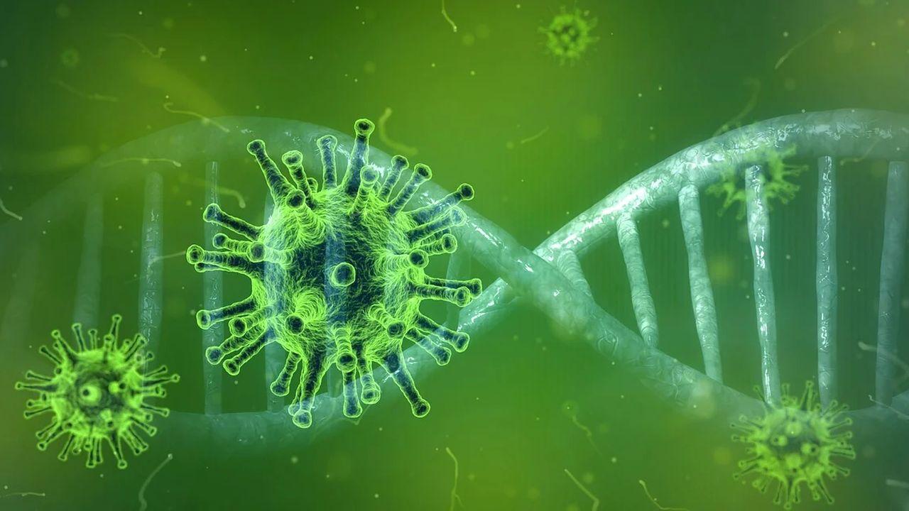 koronawirus i DNA