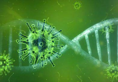 koronawirus iDNA