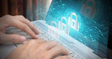 PZU bezpieczeństwo w sieci małych i średnich firm - raport