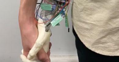 Osampo Kanojo robotyczna dłoń 3