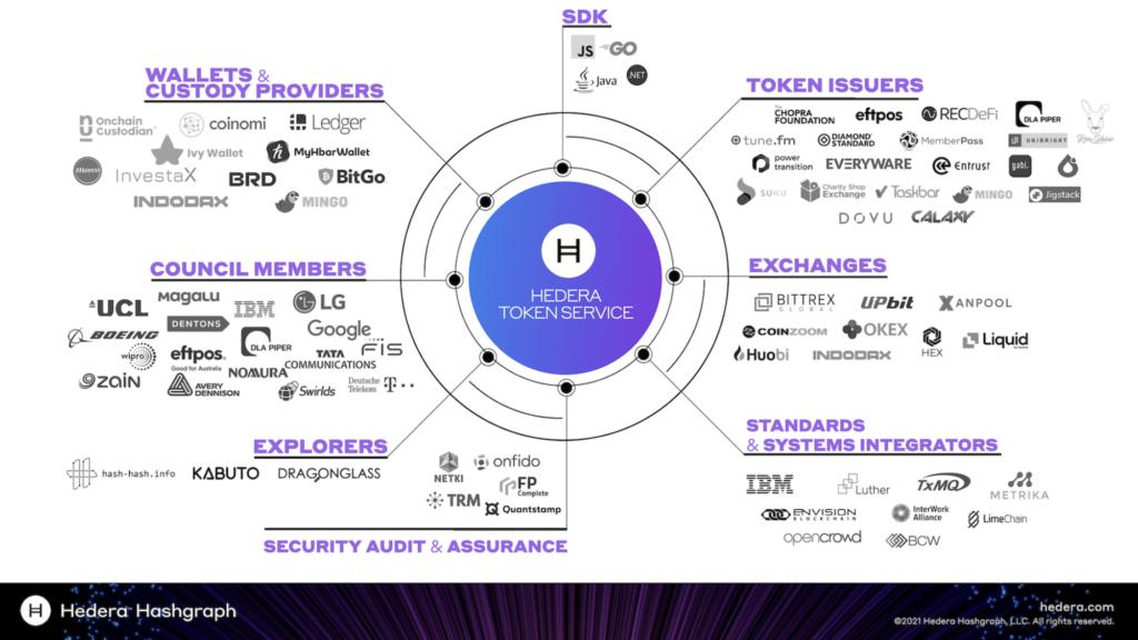 hedera-token-service-usluga-wspierana-przez-google-ibm-lg-partnerzy