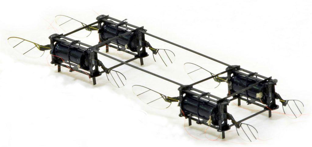 drony-inspirowane-owadami-odporne-kevin-yufeng-chen-mit