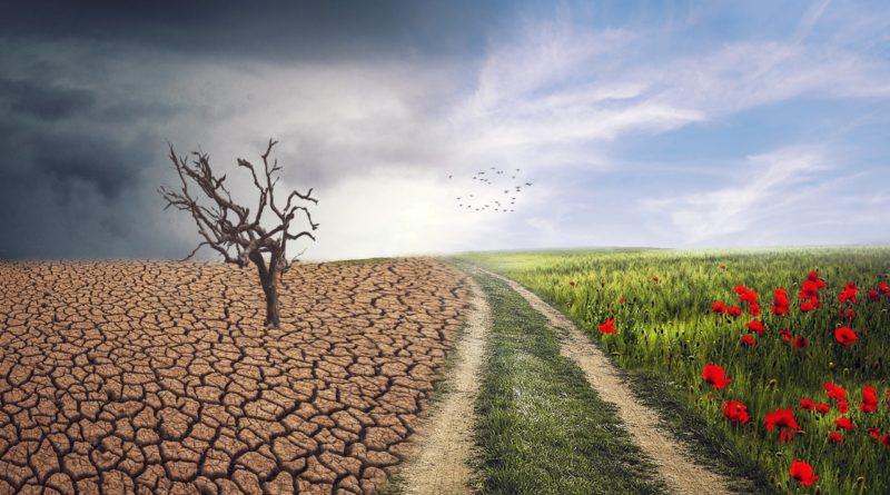 google-i-youtube-zabronia-reklam-zmiany-klimatu
