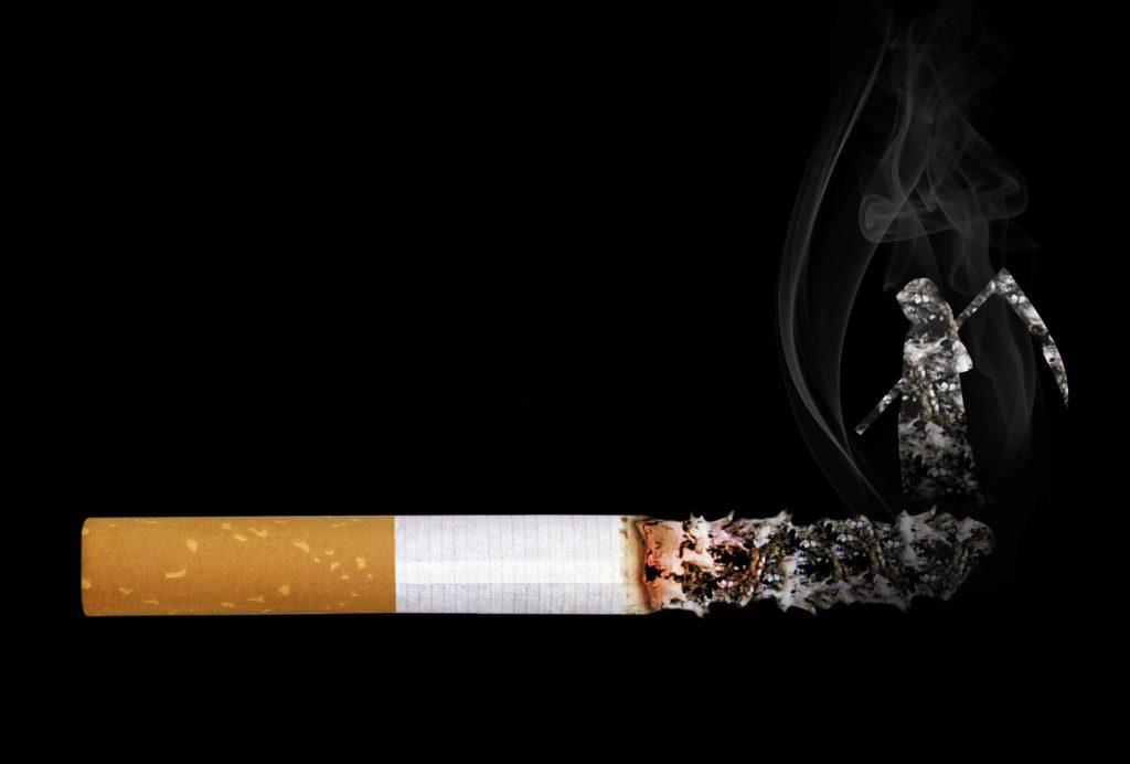 papieros Sarah Richter zPixabay